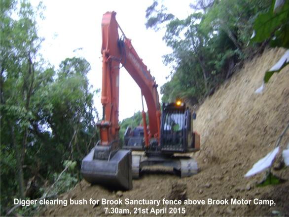 Native bush destoyed by digger